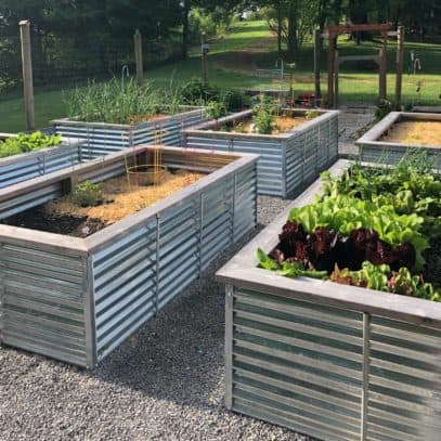 Raised beds arranged in a grid pattern outside