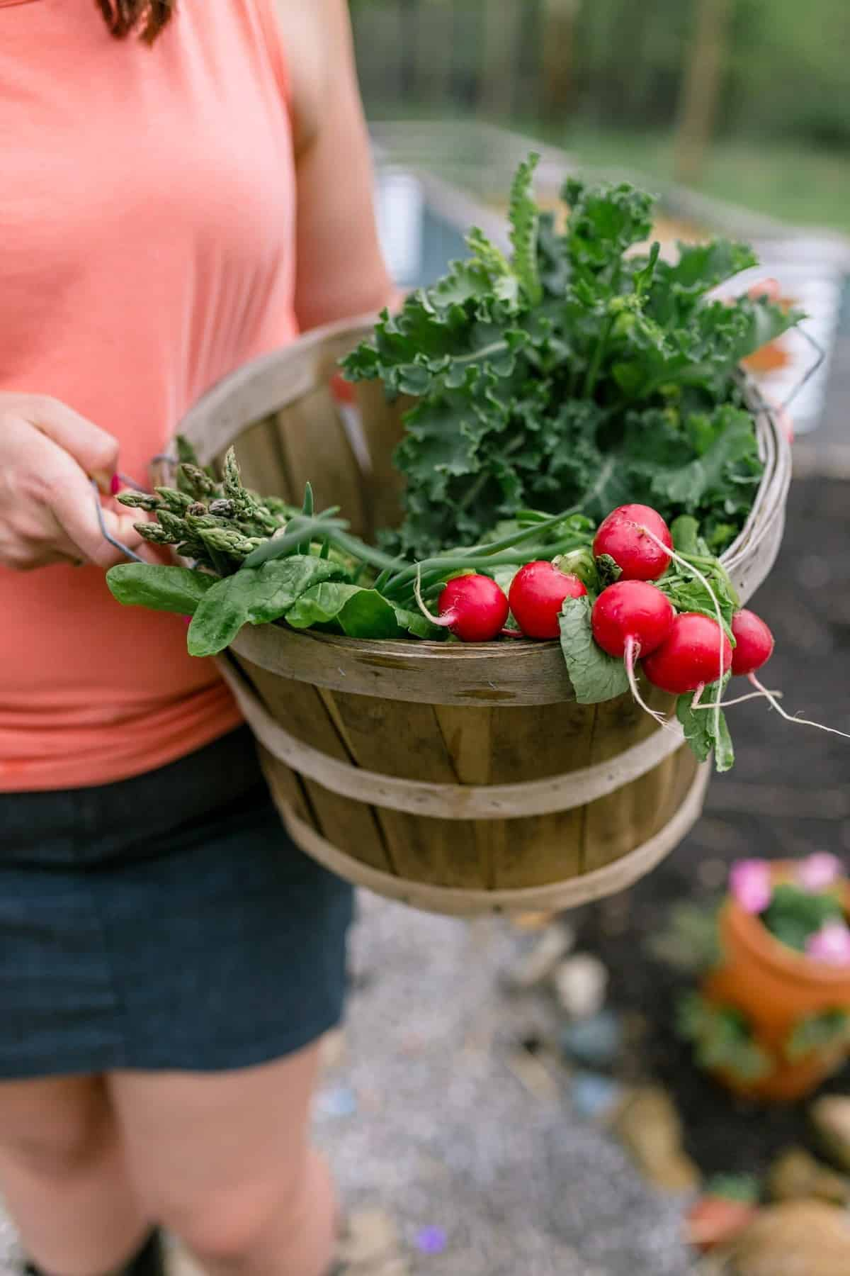 A woman holds a basket full of just-harvested garden vegetables.