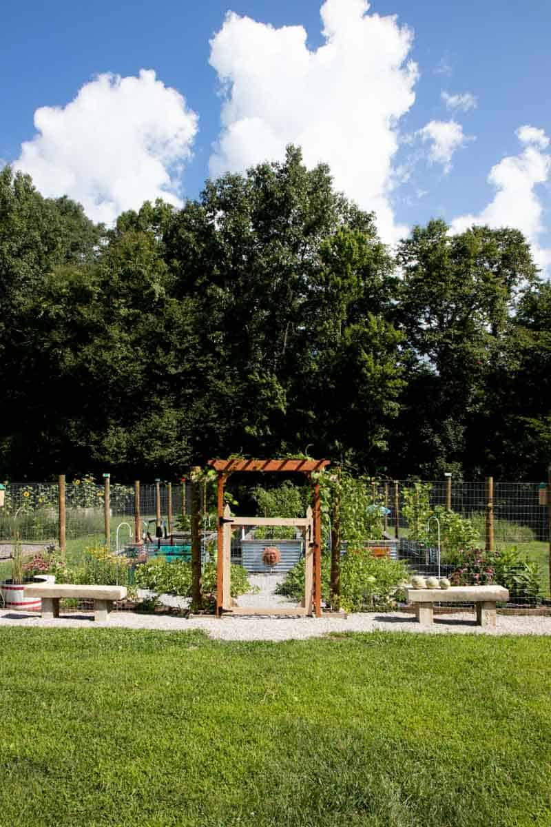 A raised bed garden, surrounded by a tall fence.