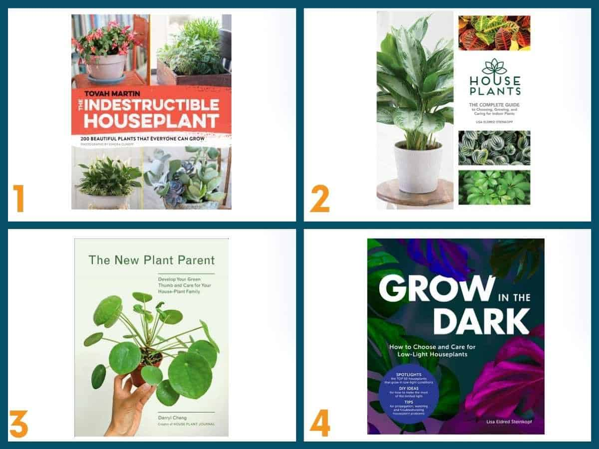 A collage of 4 indoor gardening books.