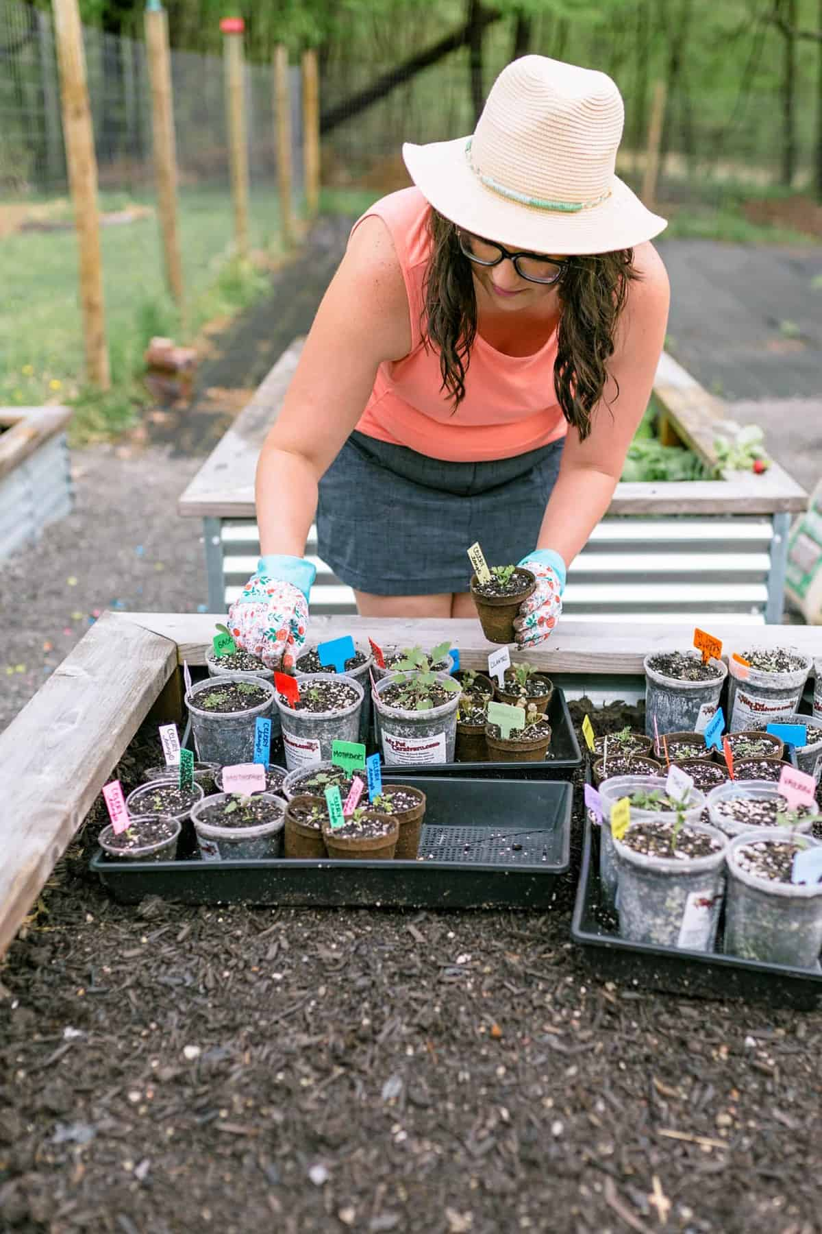 A woman tends to seedlings on a tray in a garden bed.