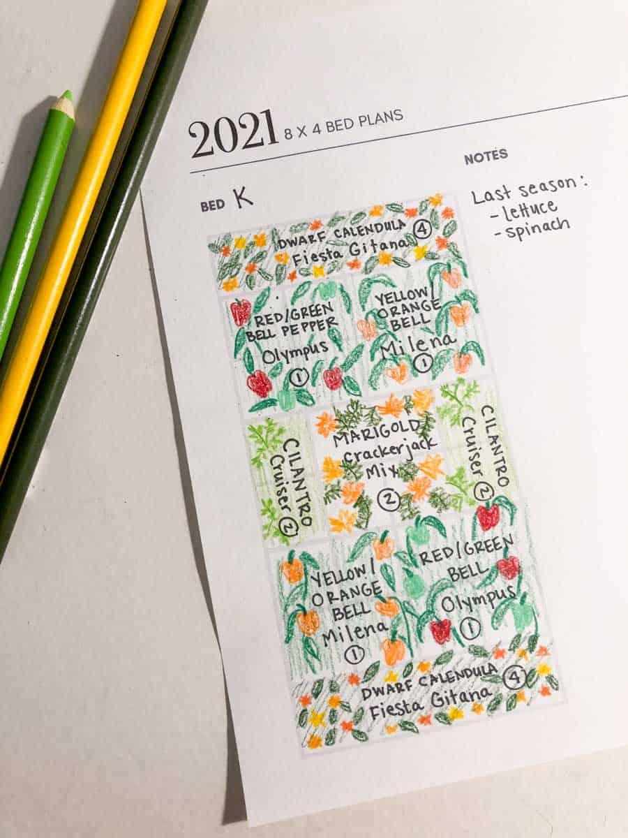 Hand drawn colorful gardening plan.
