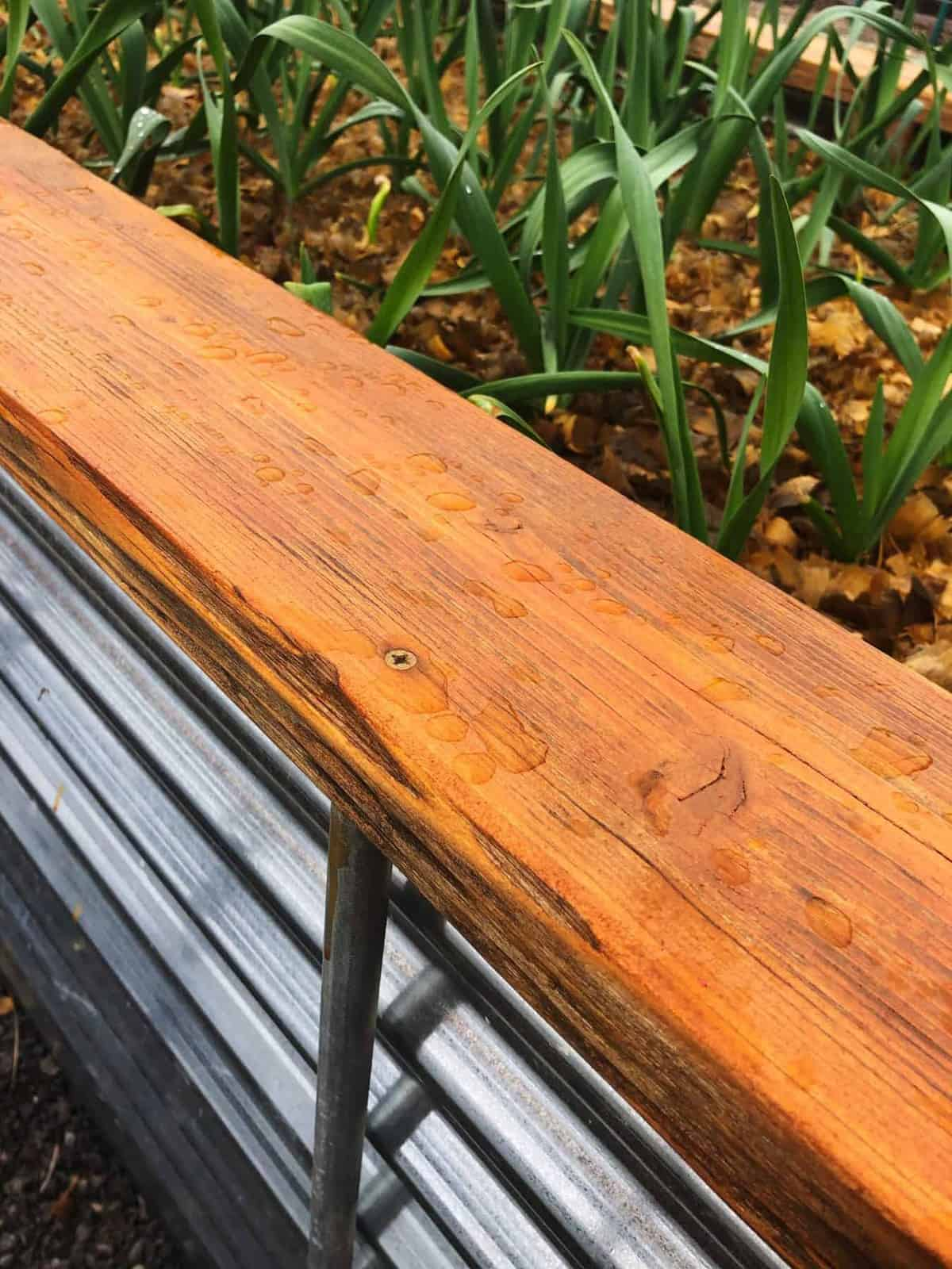 Tight view of a raised garden bed with a screw in a cedar board.