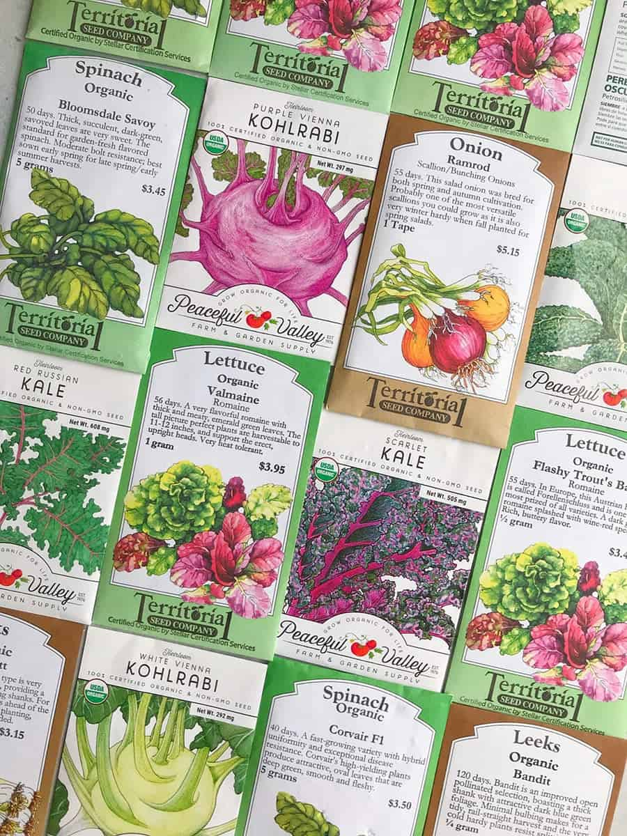 Seed packets laid out in a grid.