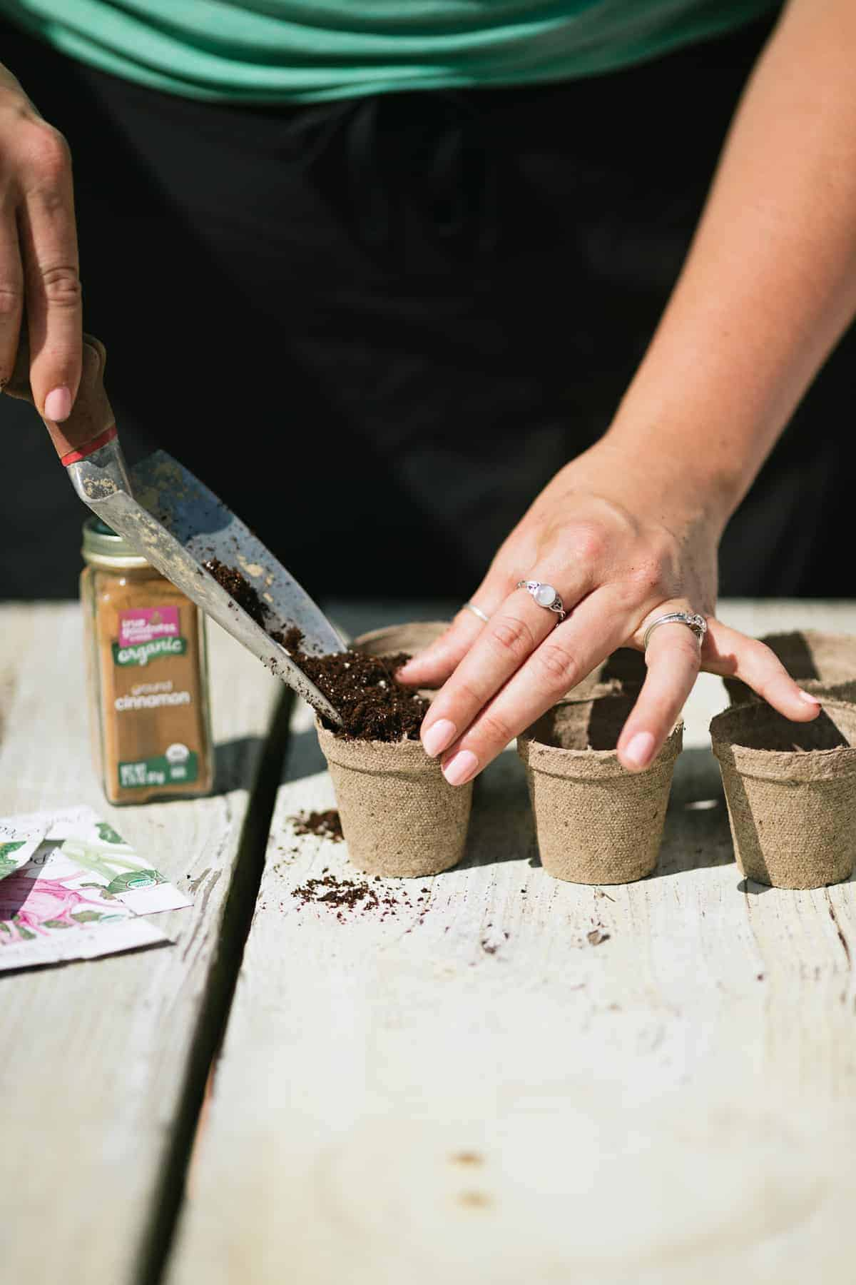 Demonstrating how to start seeds indoors: a trowel scoops dirt into peat pots, with seed packets and cinnamon nearby