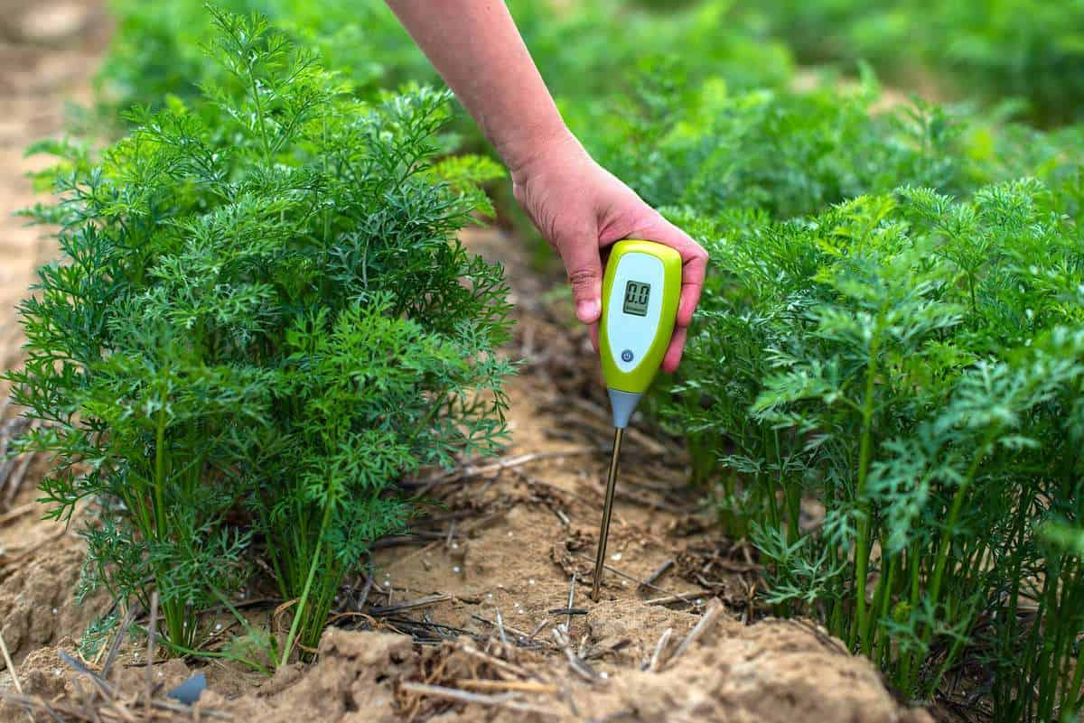 A hand uses a soil probe to measure the pH of the soil.