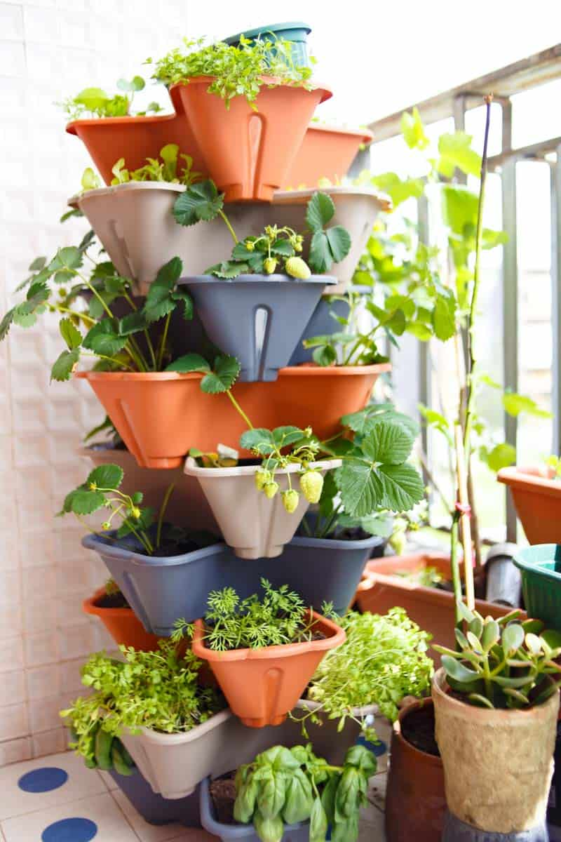 Various herbs and greens grow in a stacked tower garden.
