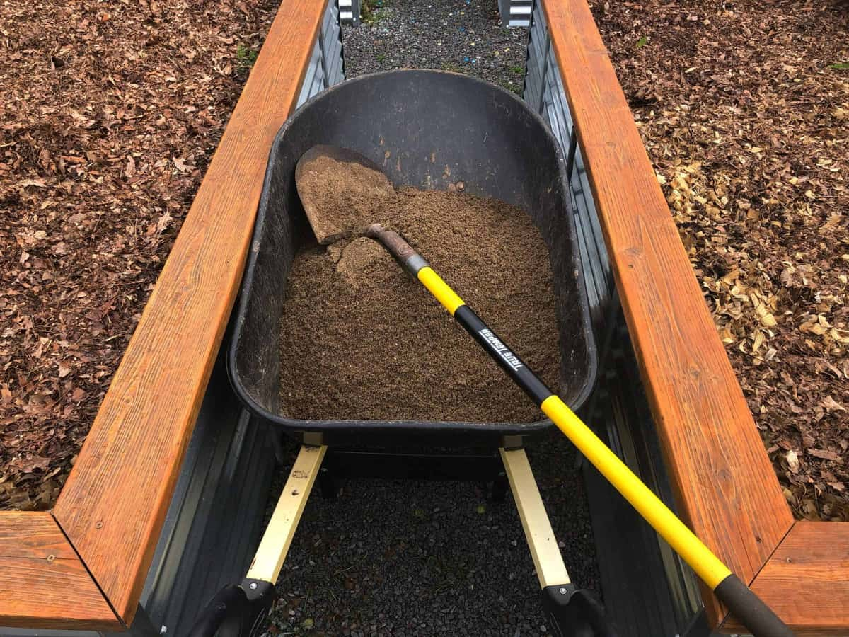 A black wheelbarrow full of dirt with a shovel on top fits between two raised garden beds.