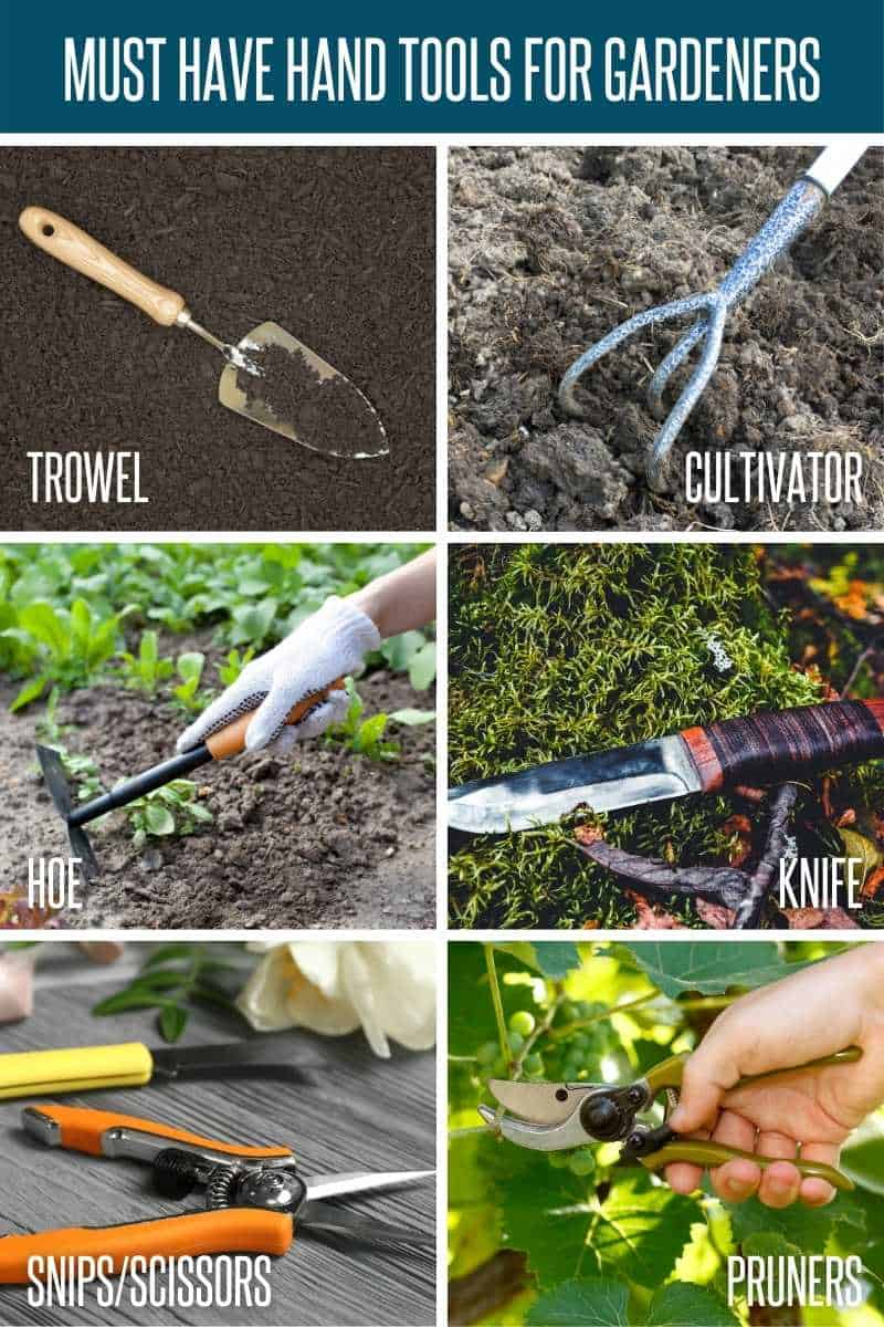 A collage of must-have hand tools: Trowel, cultivator, hoe, knife, snips, and pruners