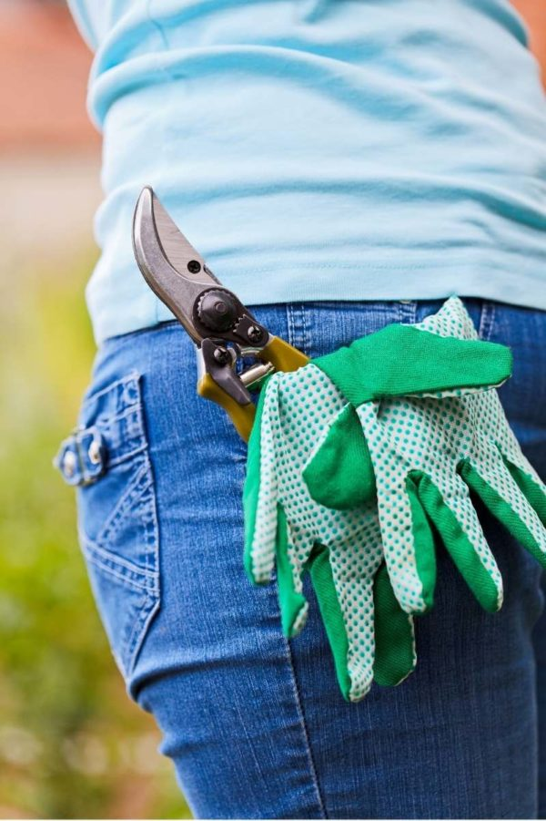 Green garden gloves and a pruner stick out from a back jeans pocket.