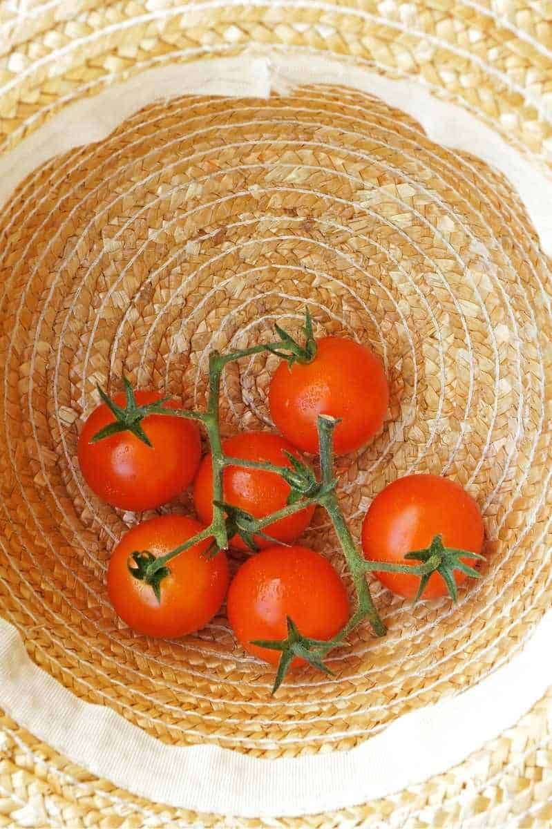 An upside-down straw hat holds fresh garden tomatoes