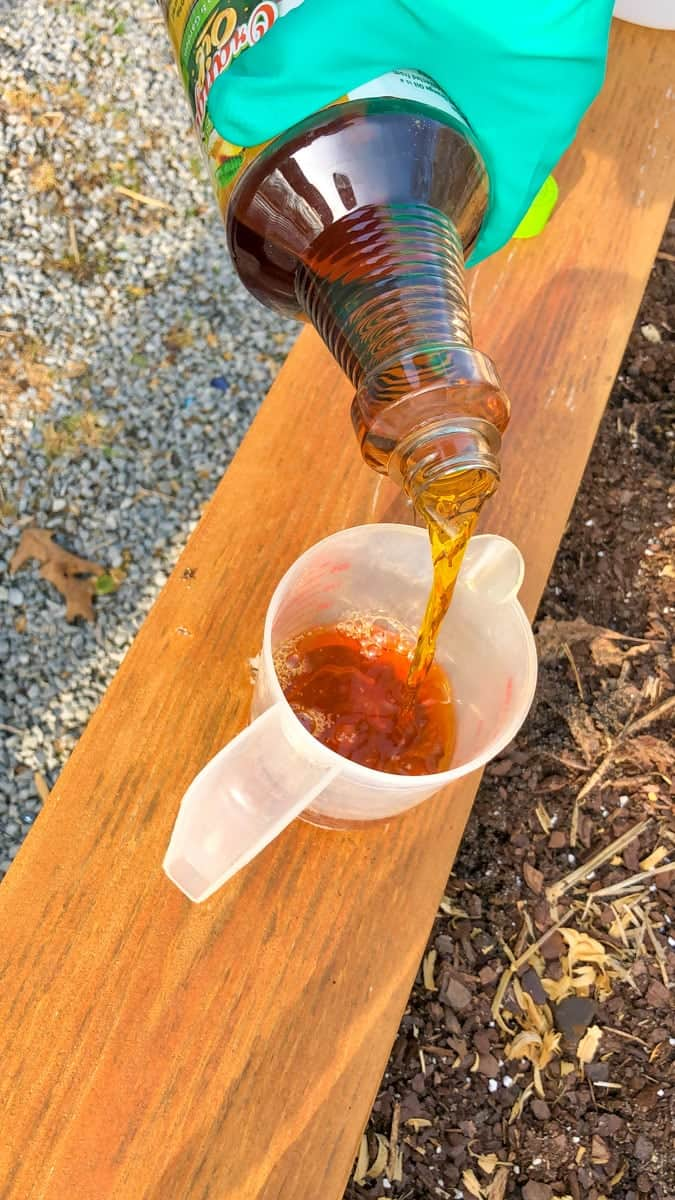 Orange oil is poured into a liquid measuring cup