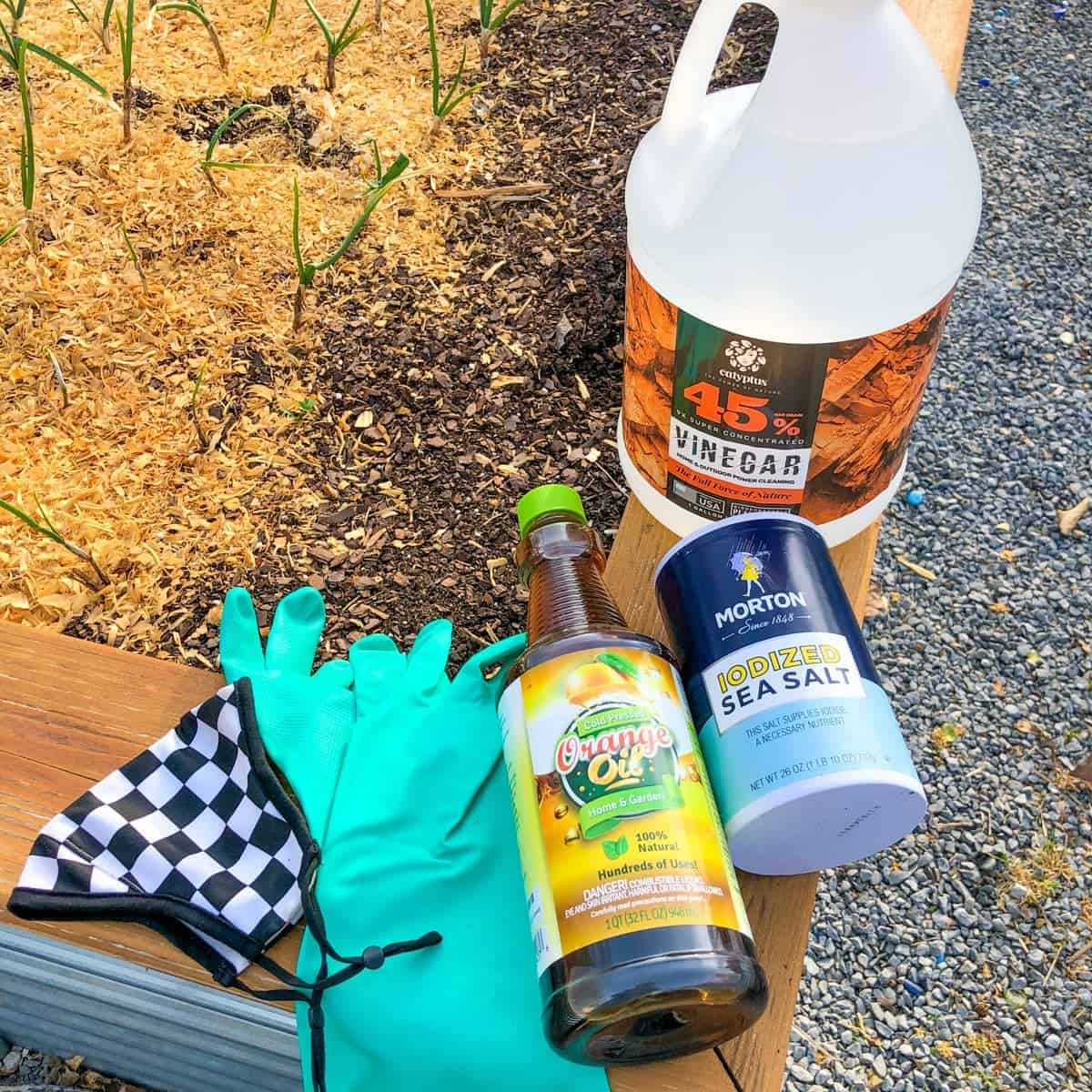 Protective gear (gloves and a mask) sit next to the ingredients for homemade weed killer—orange oil, sea salt, and horticultural vinegar