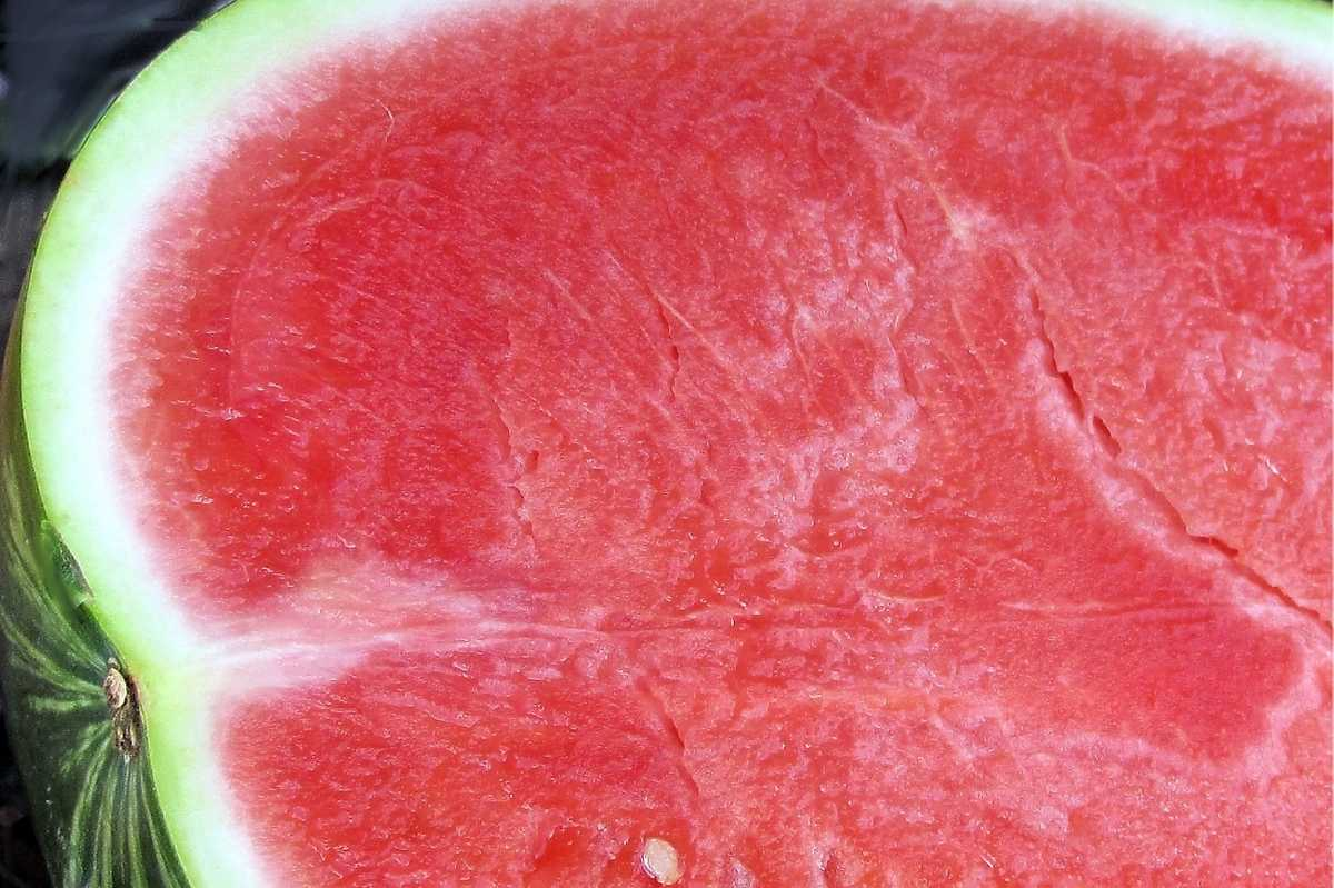 Close up on a halved seedless watermelon