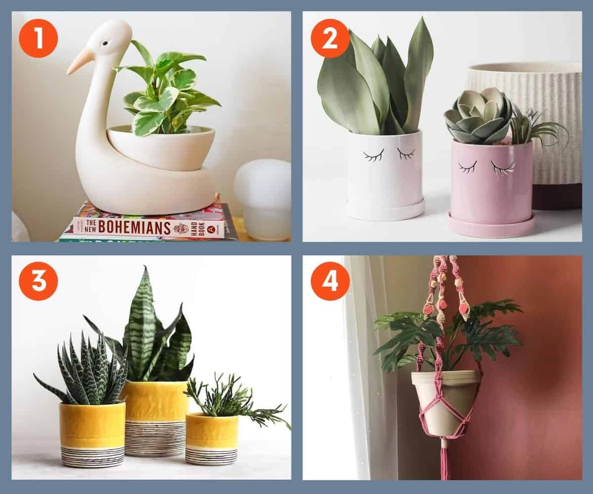 A collage of four planters, perfect for gifts for plant lovers