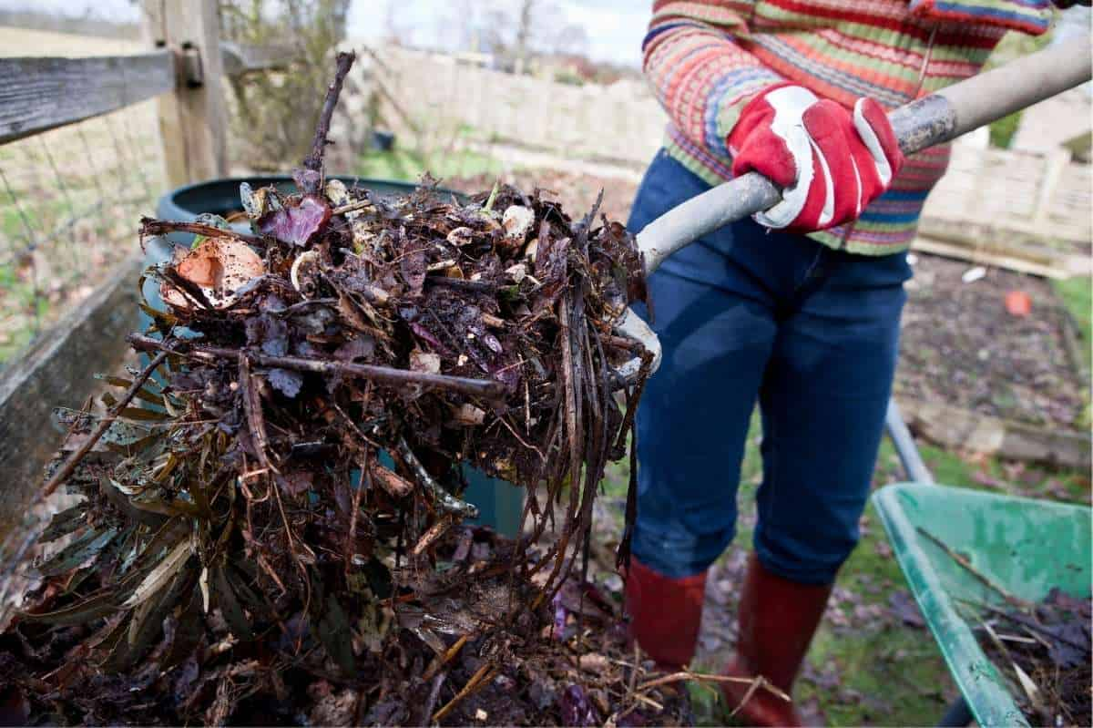 A person uses a garden fork to turn compost.