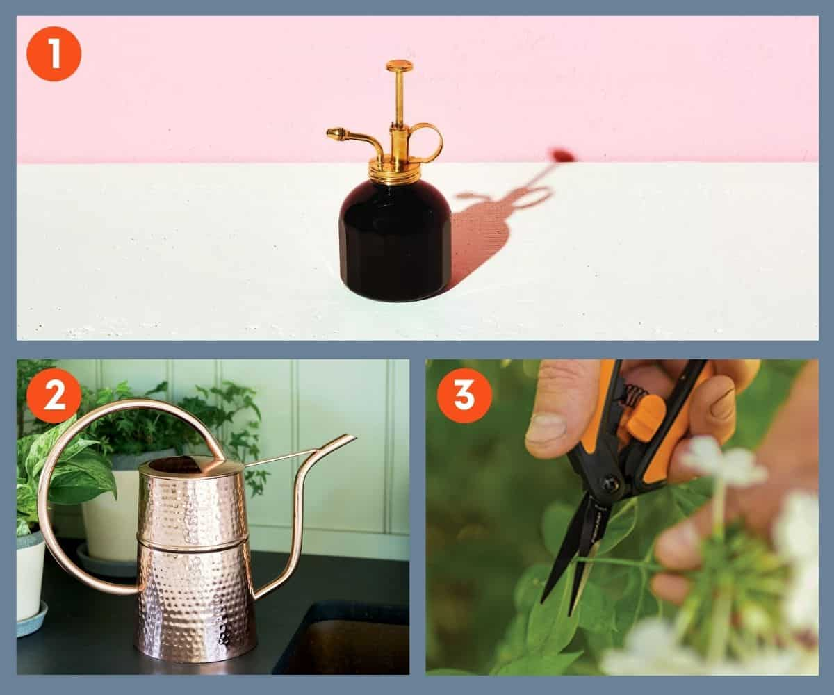 A collage of houseplant tools that make great gifts