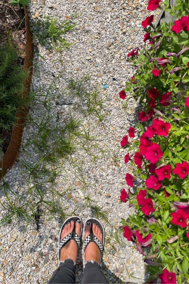 A woman's feet in flip-flops on a gravel pathway. There are weeds in the gravel