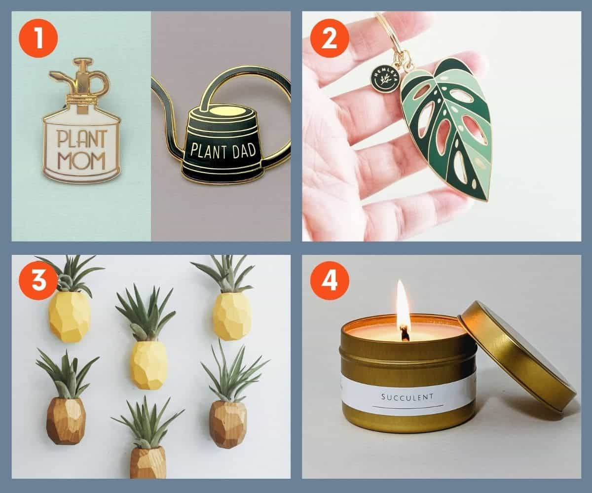Collage of accessories for plant lovers: pins, keywords, air plant planter, and a candle.