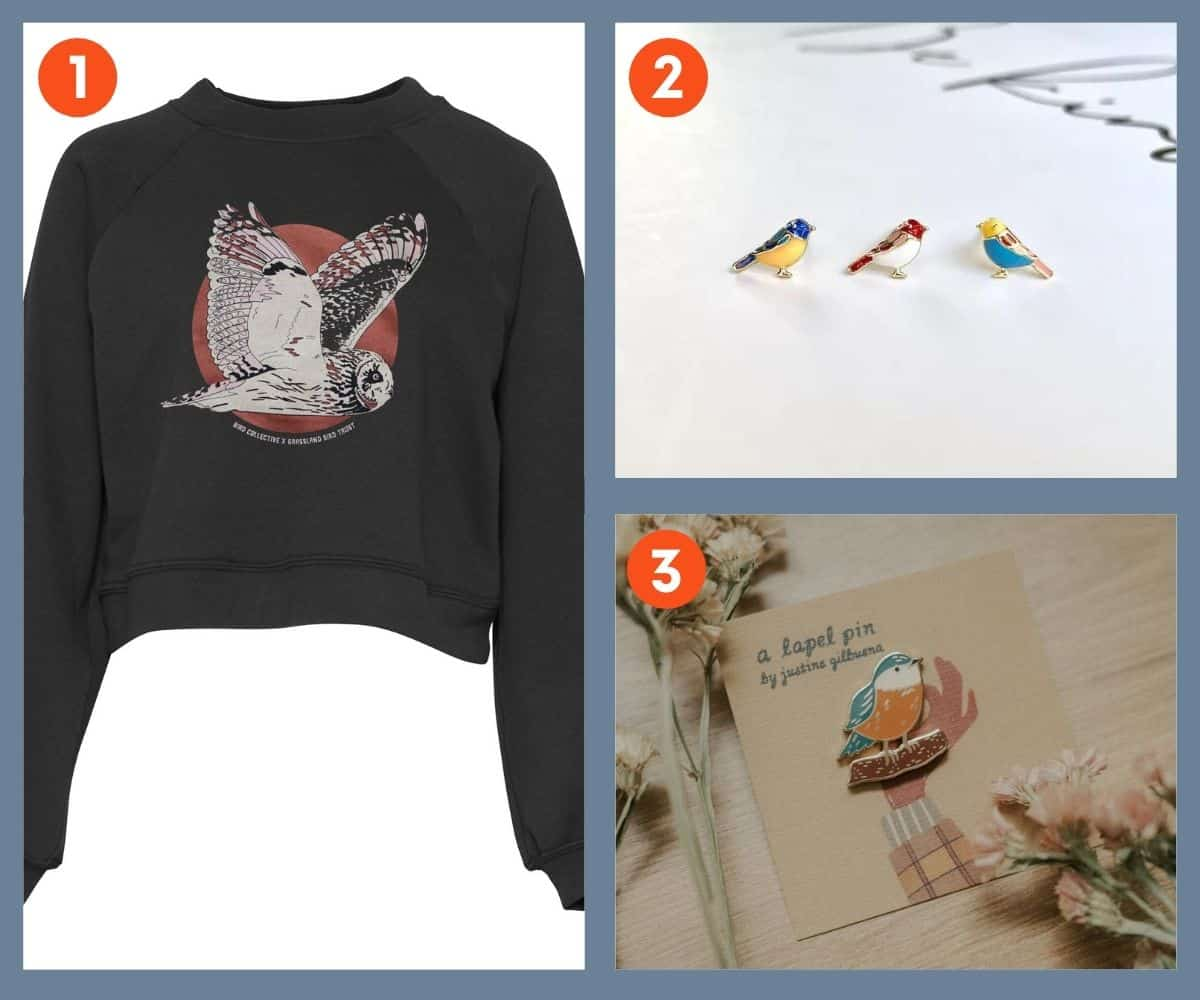A collage of a cropped sweatshirt, earrings, and a pin, all bird-themed
